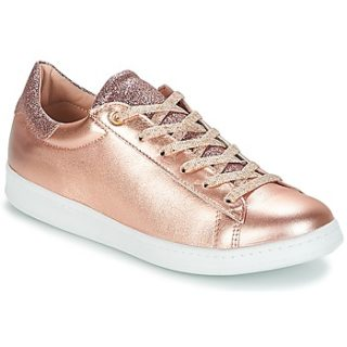 lollipops BILLY SNEAKER