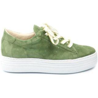 Mjus DAMES sneaker 686112. groen