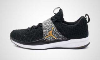 Jordan Trainer 2 Flyknit Training (Zwart) Sneaker