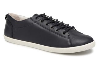 Sneakers Bel Nca by P-L-D-M By Palladium