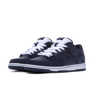 Nike SB Dunk Low Skateboarding