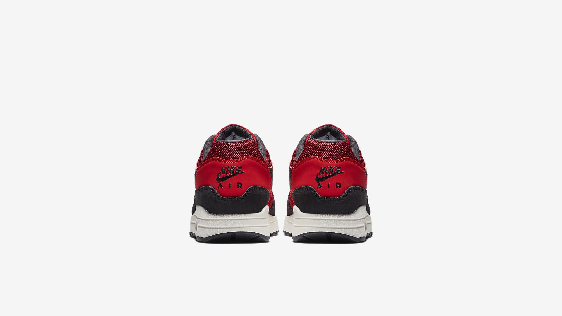 Nike Air Max 1 AH8145-600