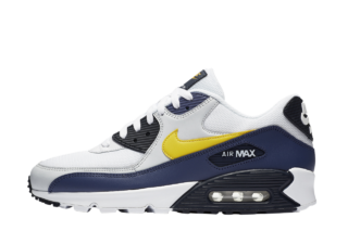 Nike Air Max 90 Essential (Wit)