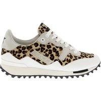 Golden Goose Deluxe Brand Sneakers g32ws456 wit-leopard