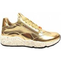 Red Rag Exclusieve Gouden sneaker