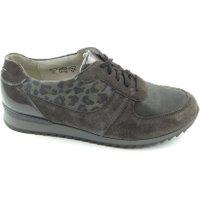 Waldläufer Sneakers grijs