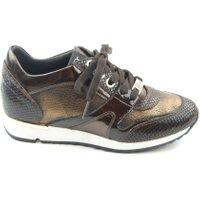 DL Sport Sneakers bruin