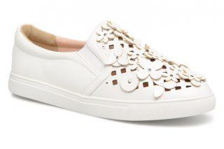 Sneakers Tamen by Molly Bracken