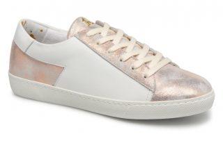 Sneakers Must by Craie