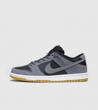 Nike SB Dunk Low (grijs)