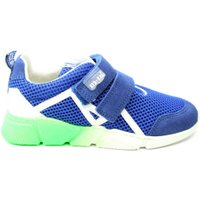Red Rag 13151 sneaker blauw