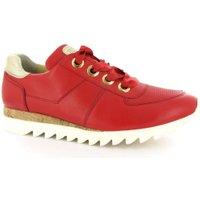 Paul Green 4591 rood