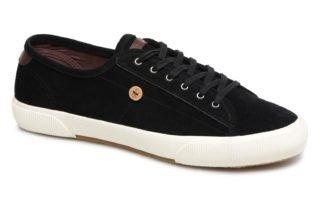 Sneakers Birch02 by Faguo