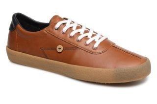 Sneakers Albizia03 by Faguo