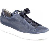 Paul Green 4652 blauw
