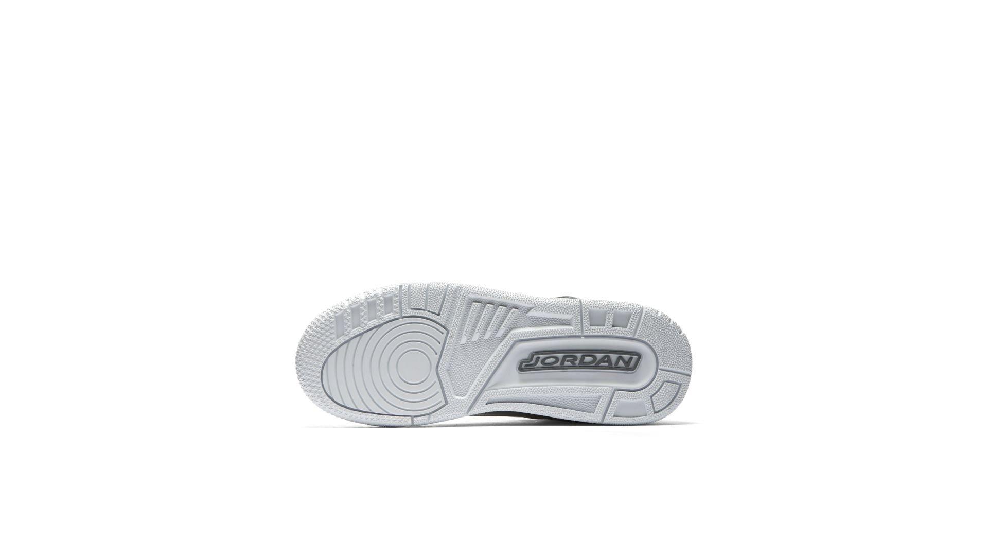 Air Jordan 3 AA1243-020