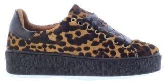 Miss Behave Sneakers bruin