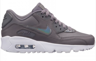 Nike Air Max 90 Leather 833376 012 Grijs