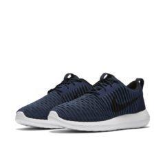 Nike Roshe Two Flyknit 844833-400