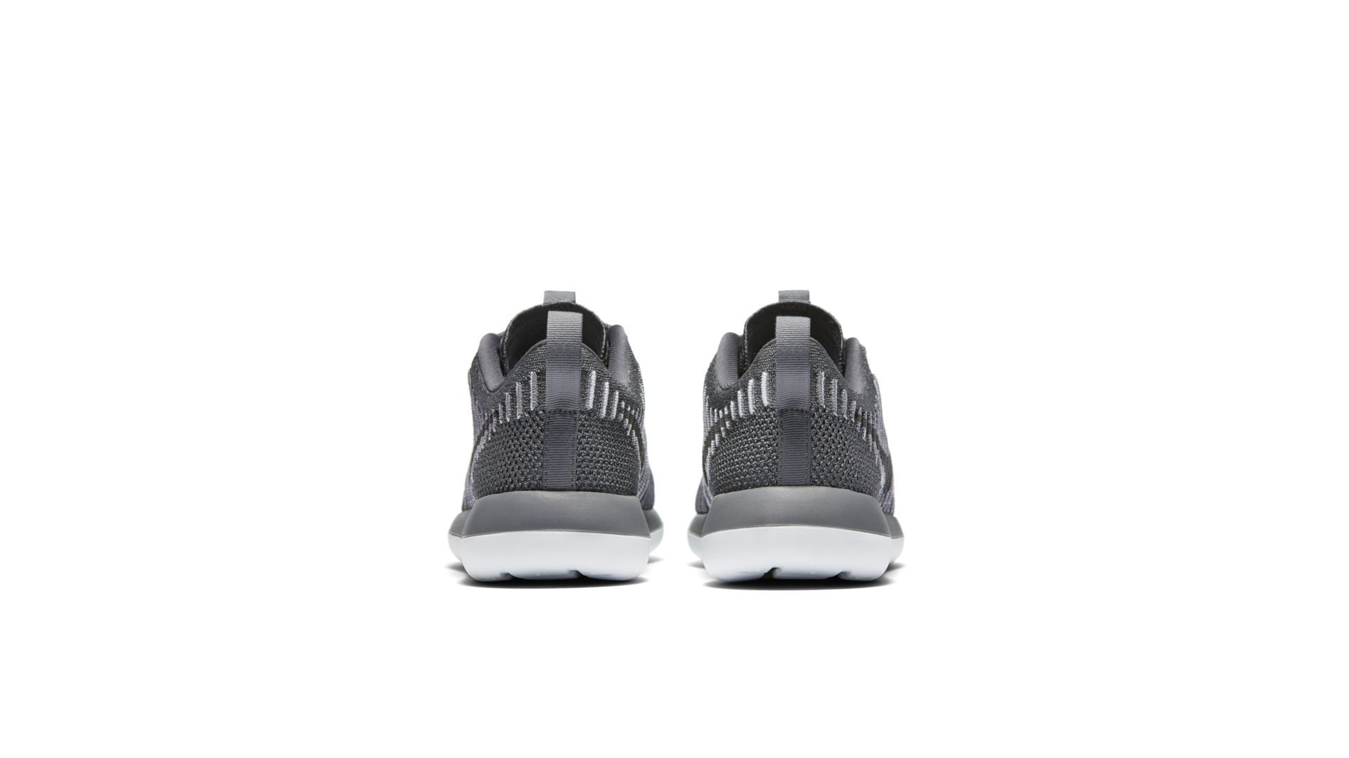 Nike Roshe Two Flyknit Pure Platinum (W) (844929-002)