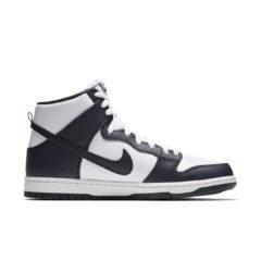 Nike SB Dunk 854851-441