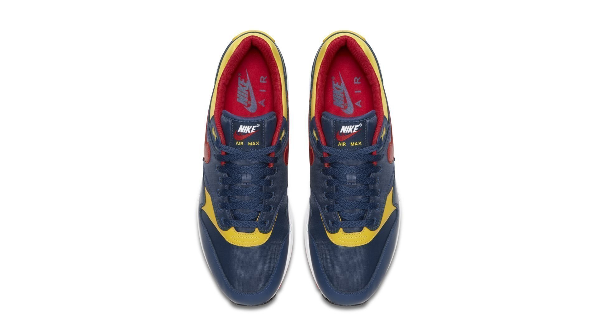 Nike Air Max 1 Snow Beach (875844-403)