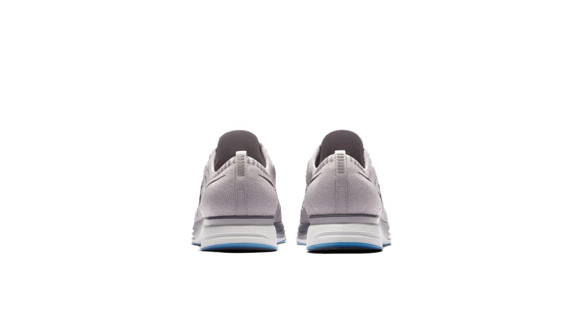 Nike Flyknit Trainer Atmosphere Grey (AH8396-006)