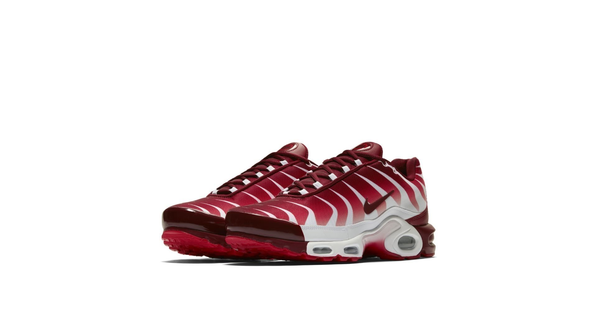 Nike Air Max Plus After the Bite (AQ0237-101)
