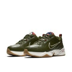 Nike Air Monarch IV AV6676-300