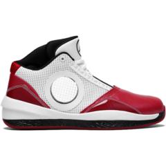 Air Jordan 2010 387358-101