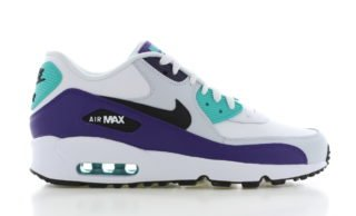 Nike Air Max 90 LTR GS Paars/Wit