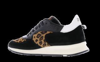 Monte Carlo Leopard Zwart