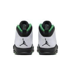 Air Jordan 10 310805-137